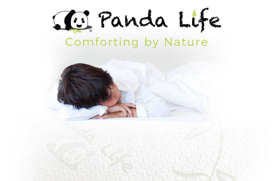 Panda Life Pillow at Costco Port Chester