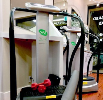 Zaaz Oscillating Exercise Machines at Costco Overland Park